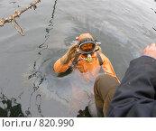 Купить «Водолаз-спасатель», фото № 820990, снято 19 апреля 2009 г. (c) Салякин Виталий Валерьевич / Фотобанк Лори