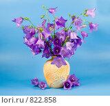 Купить «Букет в вазе», фото № 822858, снято 26 июня 2008 г. (c) Елена Блохина / Фотобанк Лори