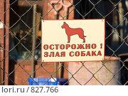 """Купить «Табличка """"Осторожно! Злая собака!», фото № 827766, снято 24 апреля 2009 г. (c) Алексей Крылов / Фотобанк Лори"""