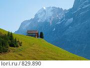 Маленький дом на холме в Альпах (2008 год). Стоковое фото, фотограф Aleksey Trefilov / Фотобанк Лори