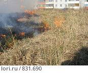 Горящая трава. Стоковое фото, фотограф Андрей Гольцман / Фотобанк Лори