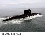 Купить «Дизель-электрическая подводная лодка проекта 877 «Палтус»», фото № 833002, снято 21 августа 2008 г. (c) Ямаш Андрей / Фотобанк Лори