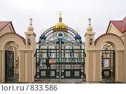 Купить «Челябинск. Свято-Симеоновский храм», фото № 833586, снято 29 ноября 2008 г. (c) Julia Nelson / Фотобанк Лори