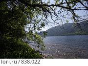 Озеро телецкое (2008 год). Редакционное фото, фотограф Соловова Валентина Олеговна / Фотобанк Лори