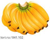 Связка бананов. Стоковая иллюстрация, иллюстратор tyuru / Фотобанк Лори