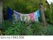 Купить «Белье сушится на веревке», фото № 843506, снято 7 сентября 2008 г. (c) Наталия Печёрских / Фотобанк Лори