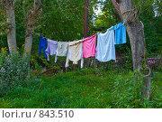 Купить «Белье сушится на веревке», фото № 843510, снято 7 сентября 2008 г. (c) Наталия Печёрских / Фотобанк Лори
