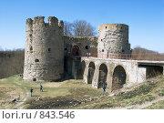 Купить «Крепость в Копорье», эксклюзивное фото № 843546, снято 2 мая 2009 г. (c) Александр Щепин / Фотобанк Лори