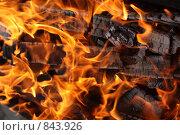 Купить «Огонь», фото № 843926, снято 1 апреля 2009 г. (c) Dmitriy Andrushchenko / Фотобанк Лори