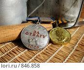 Купить «Две медали, нож, котелок, кружка», эксклюзивное фото № 846858, снято 5 мая 2009 г. (c) Анатолий Матвейчук / Фотобанк Лори