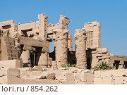 Купить «Руины Карнакского храма», фото № 854262, снято 20 ноября 2006 г. (c) Максим Иванов / Фотобанк Лори