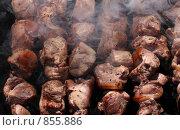 Купить «Приготовление шашлыка», эксклюзивное фото № 855886, снято 10 мая 2009 г. (c) ФЕДЛОГ / Фотобанк Лори