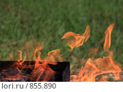 Купить «Разжигание угля в мангале», фото № 855890, снято 10 мая 2009 г. (c) ФЕДЛОГ / Фотобанк Лори