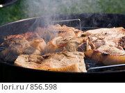 Купить «Приготовление мяса на гриле», фото № 856598, снято 9 мая 2009 г. (c) Миняева Ольга / Фотобанк Лори