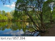Купить «Пруд в Филевском парке весной», фото № 857394, снято 9 мая 2009 г. (c) Литова Наталья / Фотобанк Лори