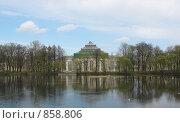 Купить «Санкт-Петербург. Таврический сад, пруд, дворец», фото № 858806, снято 5 мая 2009 г. (c) Морковкин Терентий / Фотобанк Лори