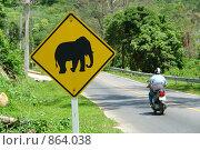 Купить «Осторожно слоны, дорожный знак», фото № 864038, снято 26 февраля 2020 г. (c) bashta / Фотобанк Лори