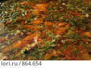 Шаурпа, суп. Стоковое фото, фотограф Артур Якуцевич / Фотобанк Лори
