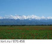 Алматинские горы. Стоковое фото, фотограф Александр Патрушев / Фотобанк Лори