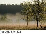 Туман. Стоковое фото, фотограф Муравьев Андрей / Фотобанк Лори