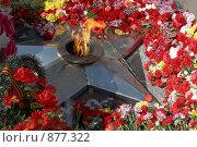 Купить «Цветы у Вечного огня на могиле Неизвестного солдата. День Победы», фото № 877322, снято 9 мая 2009 г. (c) Евгений Мареев / Фотобанк Лори