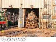Купить «Обслуживание паровоза в ангаре паровозного депо», фото № 877726, снято 29 апреля 2009 г. (c) Павел Гаврилов / Фотобанк Лори