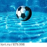 Купить «Футбольный мяч», иллюстрация № 879998 (c) ElenArt / Фотобанк Лори