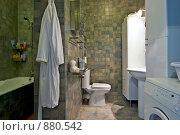 Купить «Интерьер ванной комнаты», фото № 880542, снято 20 августа 2007 г. (c) Михаил Лукьянов / Фотобанк Лори