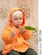 Купить «Маленькая девочка ест лист черемши», фото № 887506, снято 23 мая 2009 г. (c) Ирина Солошенко / Фотобанк Лори