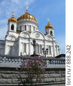 Купить «Храм Христа Спасителя», фото № 888242, снято 12 мая 2009 г. (c) Анна Белова / Фотобанк Лори