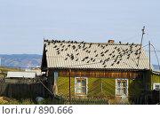 Купить «Байкал. Старый деревянный домик», фото № 890666, снято 8 сентября 2008 г. (c) Andrey M / Фотобанк Лори