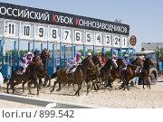 Купить «Бега на ипподроме», фото № 899542, снято 30 мая 2009 г. (c) Михаил Ворожцов / Фотобанк Лори