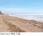 Берег Финского залива весной (2009 год). Стоковое фото, фотограф Михаил Сметанин / Фотобанк Лори