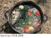 Купить «Уха», фото № 918094, снято 13 июня 2009 г. (c) Робул Дмитрий / Фотобанк Лори