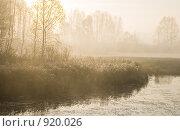 Купить «Осенний пейзаж. Восход солнца», фото № 920026, снято 8 октября 2008 г. (c) Юрий Бельмесов / Фотобанк Лори