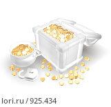 Купить «Сундук с золотом», иллюстрация № 925434 (c) Фальковский Евгений / Фотобанк Лори
