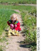 Купить «Девочка с гусятами», фото № 929534, снято 31 мая 2009 г. (c) Майя Крученкова / Фотобанк Лори