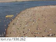 """Пляж """"Солнечный"""" на реке Белой. Стоковое фото, фотограф Гульнара Магданова / Фотобанк Лори"""