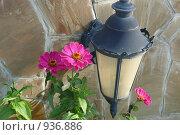 Фонарь и пурпурные цветы на фоне каменной стены. Стоковое фото, фотограф Константин Сапронов / Фотобанк Лори