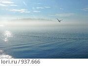 Остров Валаам в утреннем тумане. Стоковое фото, фотограф Константин Сапронов / Фотобанк Лори