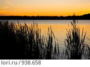 Закат в тростнике. Стоковое фото, фотограф Подбивалова Юлия / Фотобанк Лори