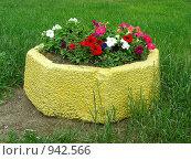 Купить «Декоративный вазон с красивой петуньей (лат. Petunia) на улице», эксклюзивное фото № 942566, снято 19 июня 2009 г. (c) lana1501 / Фотобанк Лори