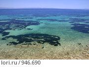 Водный мир. Стоковое фото, фотограф Дмитрий Кашканов / Фотобанк Лори
