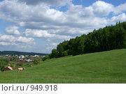 Деревенский пейзаж, коровы на лугу. Стоковое фото, фотограф Анна Фролова / Фотобанк Лори