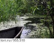 Лодка на пруду. Стоковое фото, фотограф Лариса Патракеева / Фотобанк Лори