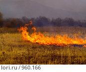 Купить «Осеннее поле с горящей травой», фото № 960166, снято 9 апреля 2009 г. (c) Олег Рубик / Фотобанк Лори