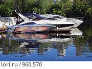 Купить «Стоянка яхт в Москве в Royal Yacht Club «Водный Стадион»», фото № 960570, снято 3 июля 2009 г. (c) Владимир Сергеев / Фотобанк Лори