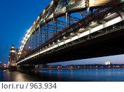 Купить «Большеохтинский мост. Санкт-Петербург. Россия», фото № 963934, снято 14 ноября 2018 г. (c) Руслан Керимов / Фотобанк Лори