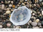 Медуза, выброшенная на берег. Стоковое фото, фотограф Анастасия Кутейникова / Фотобанк Лори
