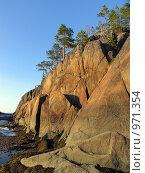Остров Кий в Белом море. Скалы с соснами на закате. Отлив. Стоковое фото, фотограф Тамара Заводскова / Фотобанк Лори